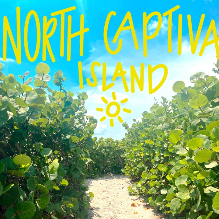 Completely Captivating: Vacationing in North Captiva Island,FL